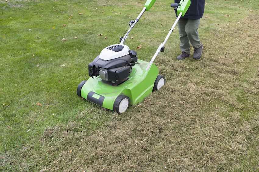 Der beste Zeitpunkt um den Rasen zu vertikutieren ist zwischen April und Mai und im Herbst zwischen September und Oktober.
