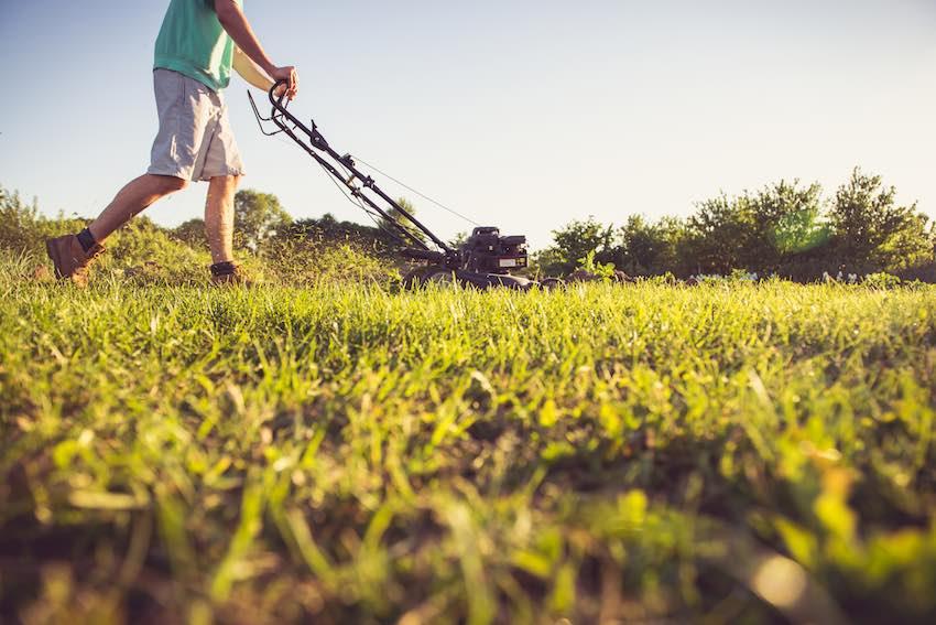 Vor dem Vertikutieren sollten Sie den Rasen unbedingt so kurz wie möglich mähen.