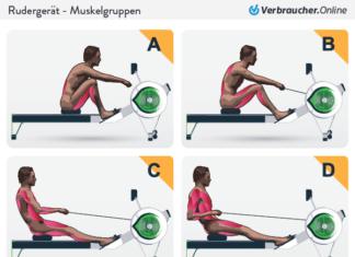 Beim Rudern werden fast alle Muskelgruppen trainiert.